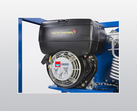Diesel engine for use in any location